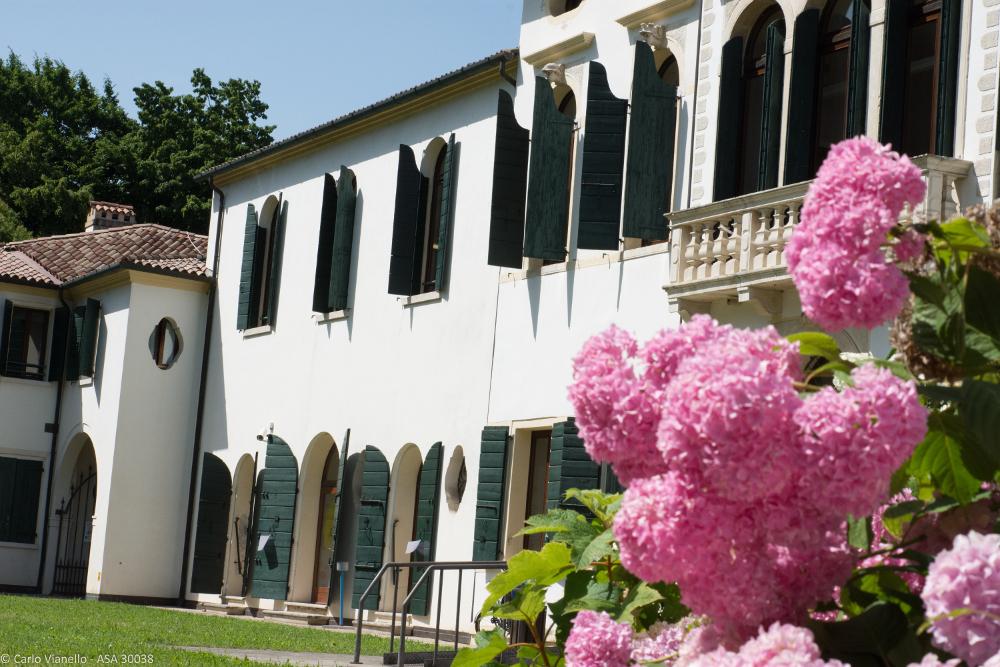 facciata biblioteca ortensie