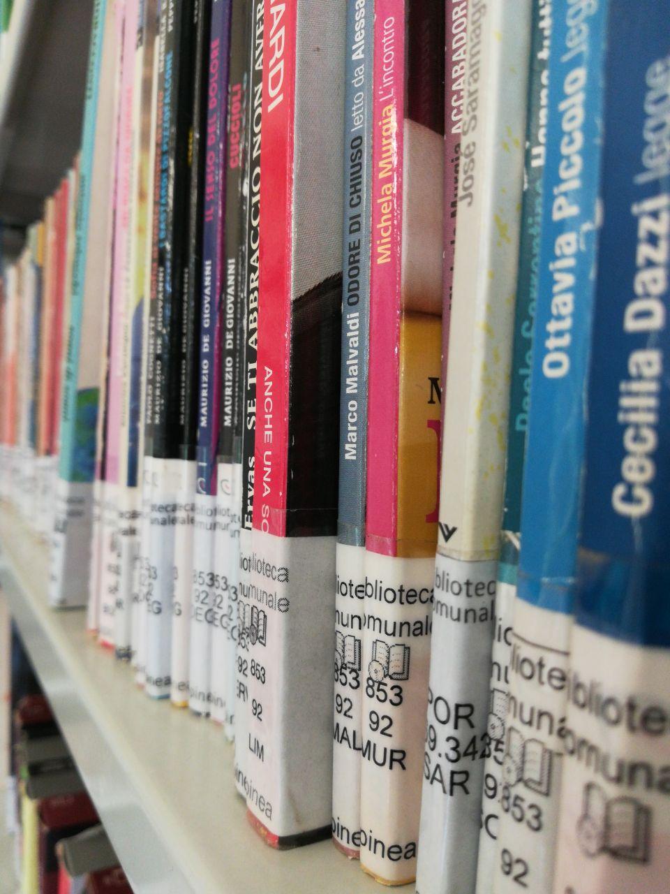 Foto di libri della biblioteca sugli scaffali