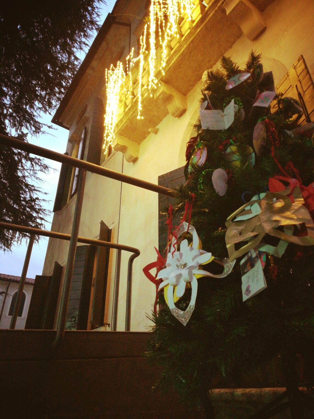 Scorci di albero di Natale