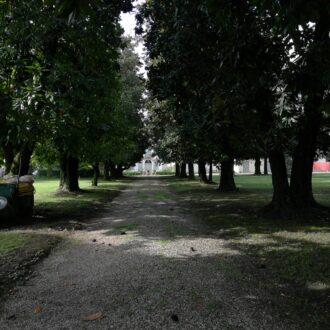 Villa Cometti, Spinea